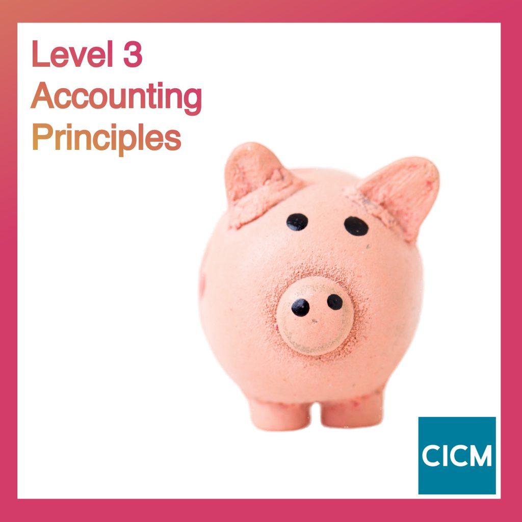 Level 3 Accounting Principles