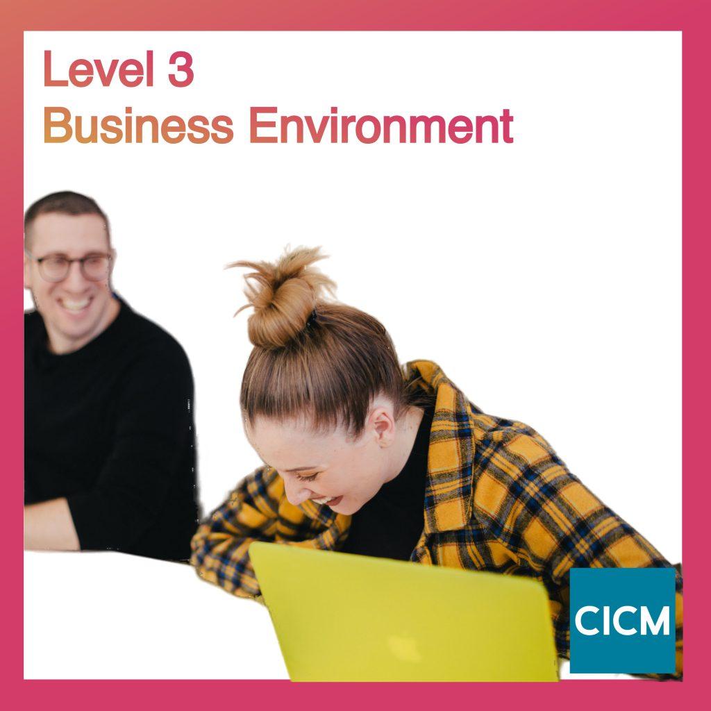 Level 3 Business Environment