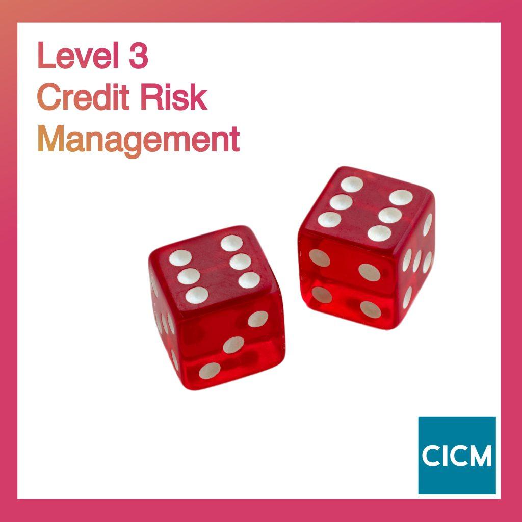 Level 3 Credit Risk Management
